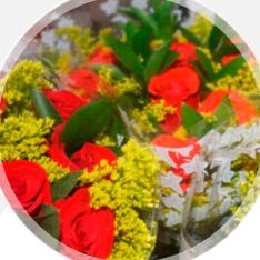 Flores, Floristerías, Insumos y Decoración
