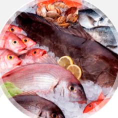 Pesqueras y Langostinos